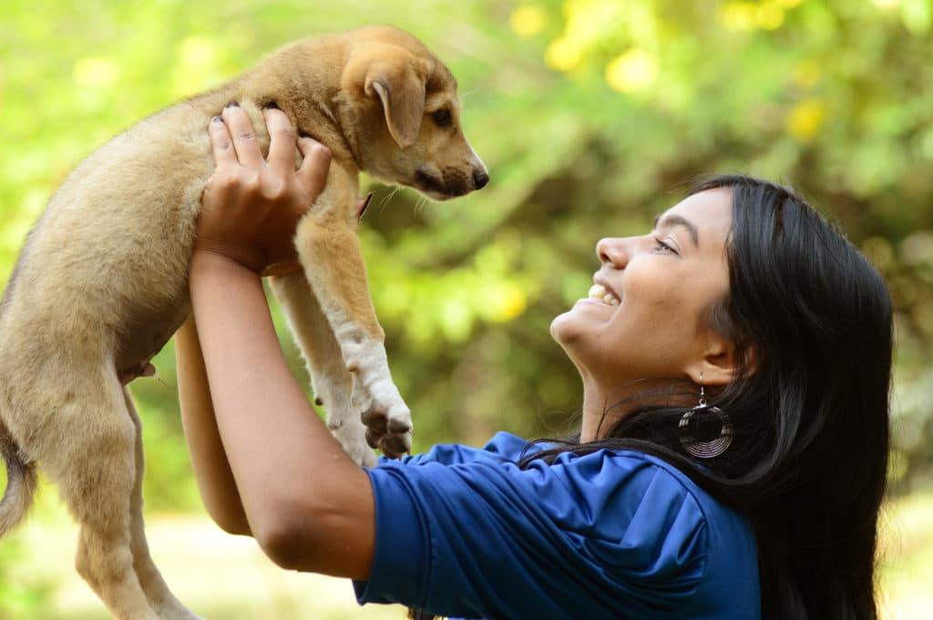 AnimEd Solution checklist adoption d'un chien