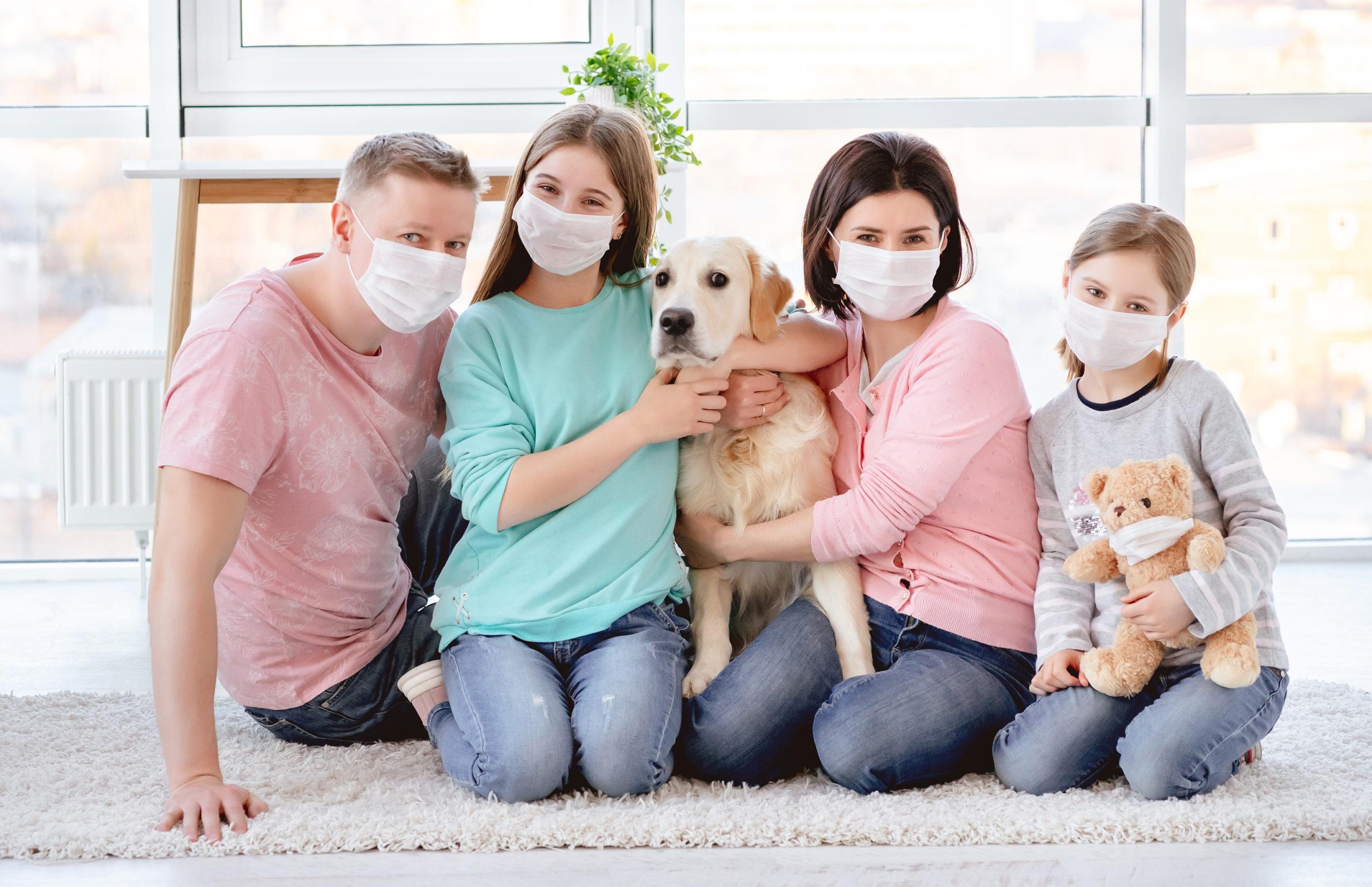 Est ce que le covid 19 est dangereux pour mon chien ou mon chat ? - AnimEd Solutions