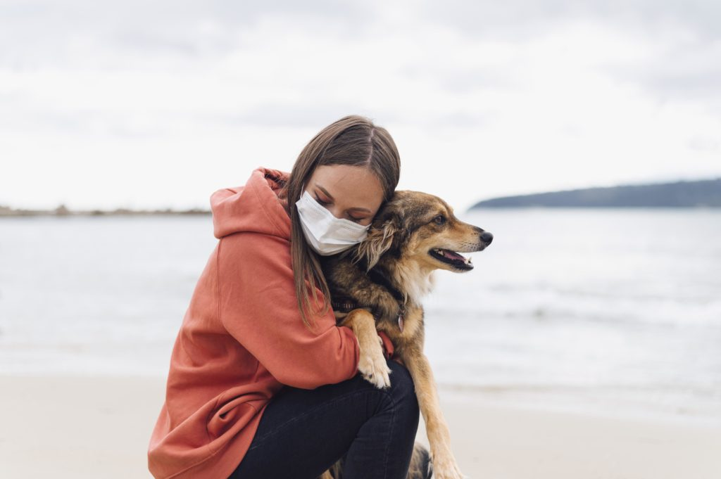 Est ce que le corona virus est dangereux pour mon chien ou pon chat - AnimEd Solutions