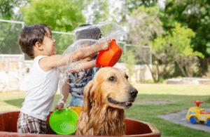 chien-dans-un-bac-deau-a-cote-des-enfants-qui-jouent-dans-leau